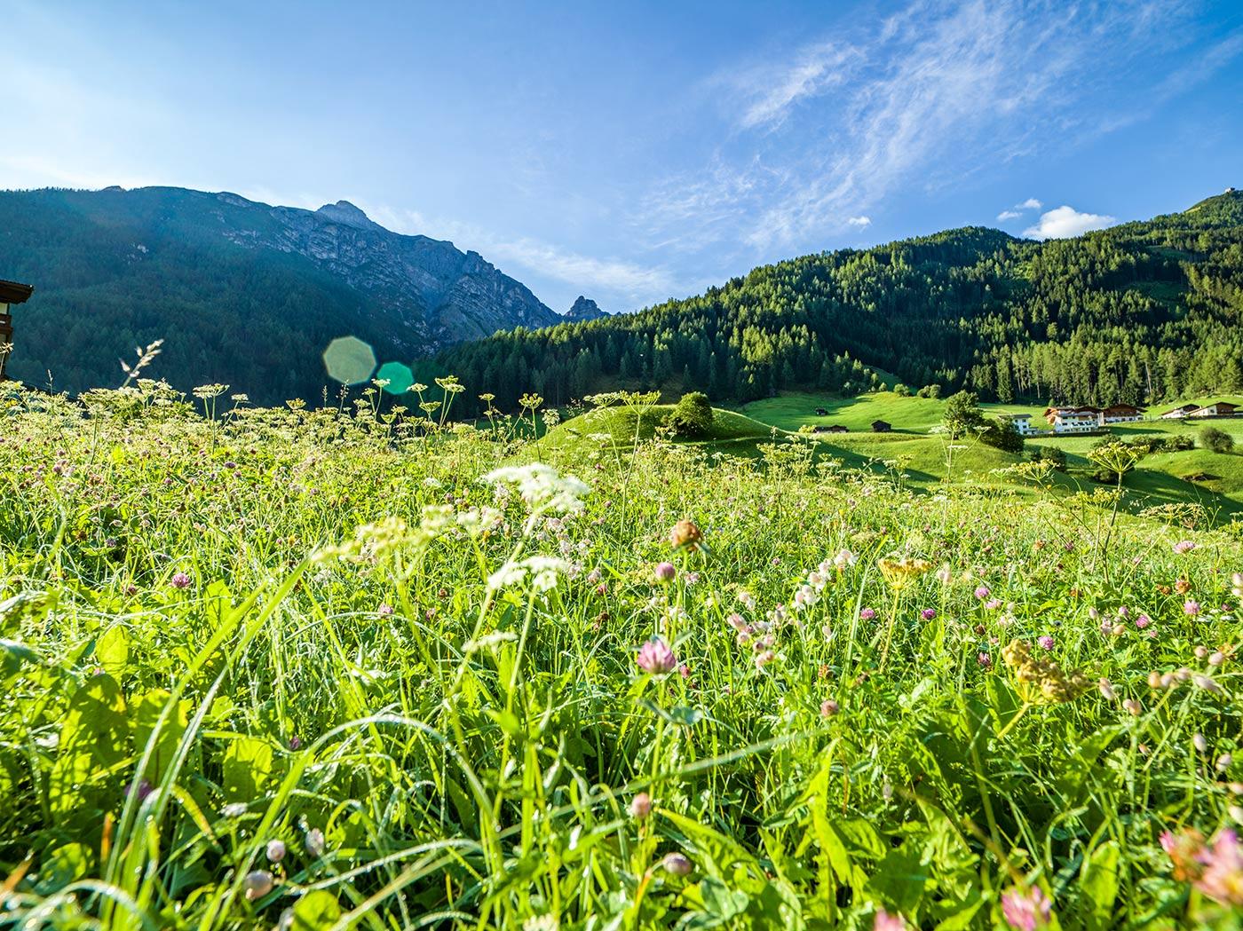 Family Sommerspass Happy Stubai Hotel Neustift Tirol Stubaier Gletscher Österreich