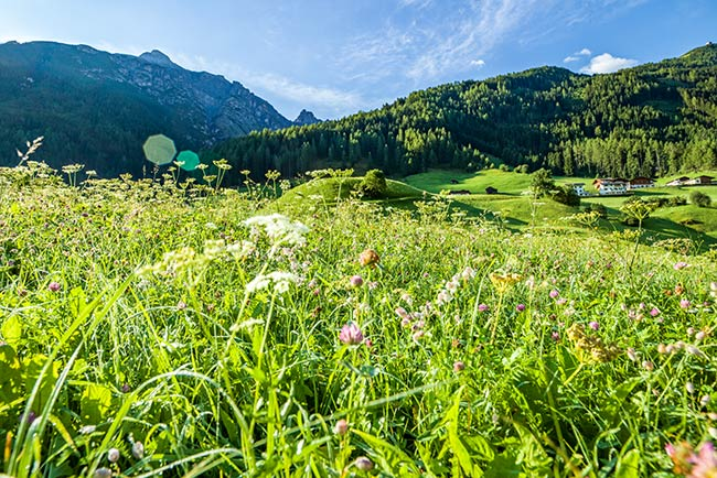 Sommerurlaub im Happy Stubai Tirol Austria